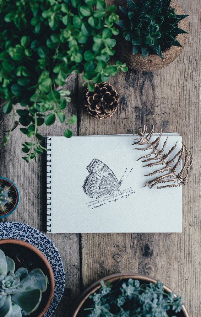 5 Amazing Free Resources for Writers