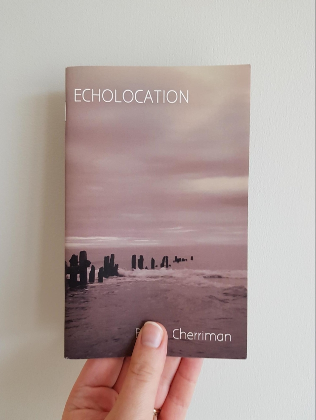 Echolocation by Becky Cherriman